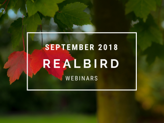 RealBird Webinars, September 2018