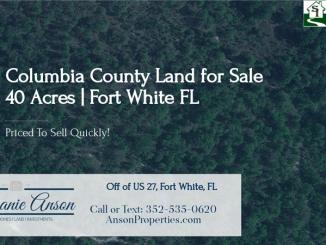40 Acres For Sale, Fort White, FL 32038